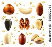 nuts icon set. raster copy | Shutterstock . vector #560032066