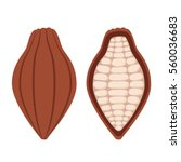 cacao beans  brown organic... | Shutterstock .eps vector #560036683