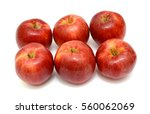 ripe red apple fruits isolated... | Shutterstock . vector #560062069