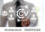 cv   curriculum vitae job... | Shutterstock . vector #560093260