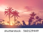copy space of silhouette... | Shutterstock . vector #560129449