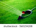 lawn sprinkler spaying water... | Shutterstock . vector #560154208