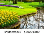 Flowerbed With Yellow Daffodil...