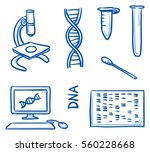 set of different dna testing... | Shutterstock .eps vector #560228668
