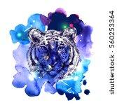 sketch vector illustration with ...   Shutterstock .eps vector #560253364