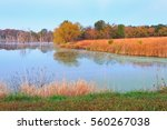 view of a fishing lake at maple ... | Shutterstock . vector #560267038
