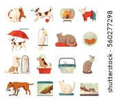 Stock vector pet shop icons set with cats and dogs flat isolated vector illustration 560277298