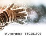 playful winter | Shutterstock . vector #560281903