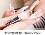 manicure specialist care by... | Shutterstock . vector #560304430