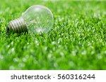 energy light bulb on green... | Shutterstock . vector #560316244