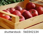 Box Of Juicy Red Apples