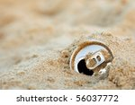 Discarded Aluminum Can In The...