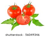 Lush tomatos with green leafs. Isolated - stock photo