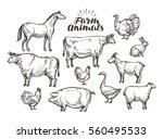 farm  vector sketch. collection ... | Shutterstock .eps vector #560495533