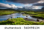 Great Moor Of Rannoch  Scotlan...