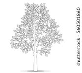 tree with leaves for coloring... | Shutterstock .eps vector #560501860
