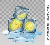 ice cube with lemon....   Shutterstock .eps vector #560507458
