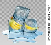 ice cube with banana.... | Shutterstock .eps vector #560507464