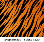 tiger texture abstract... | Shutterstock .eps vector #560517520