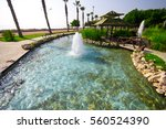 oasis | Shutterstock . vector #560524390