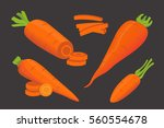 set carrot vector illustration