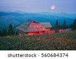 original photo house shepherds... | Shutterstock . vector #560684374