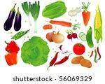 vector set of raw vegetables. | Shutterstock .eps vector #56069329