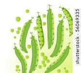 sweet pea. vector. | Shutterstock .eps vector #56069335