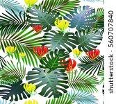 toucan tropical bird in a... | Shutterstock .eps vector #560707840