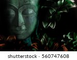 the serene face of buddha in... | Shutterstock . vector #560747608