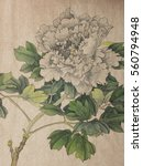 White Peony Flower Painted In...