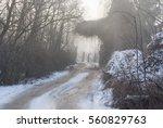 winter | Shutterstock . vector #560829763