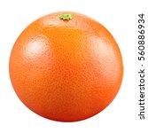 grapefruit isolated on white... | Shutterstock . vector #560886934