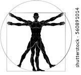 a figure like leonard da vinci... | Shutterstock .eps vector #560891014