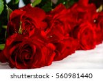 Stock photo a bouquet of red roses on white background 560981440