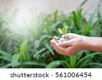investment concept growing... | Shutterstock . vector #561006454
