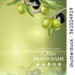 vector banner with olive branch ... | Shutterstock .eps vector #561024919