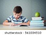 schoolboy doing homework   Shutterstock . vector #561034510