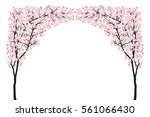 Full Bloom Pink Sakura Tree...
