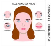 beautiful woman face with ... | Shutterstock .eps vector #561090880