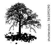realistic tree silhouette with... | Shutterstock .eps vector #561095290