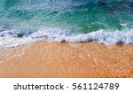 tropical seaside view with sea... | Shutterstock . vector #561124789
