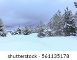 winter forest | Shutterstock . vector #561135178