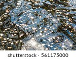 closeup of fountain with coins...
