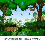 Rainforest With Animals Vector...