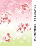 beautiful japanese cherry tree | Shutterstock .eps vector #561253489