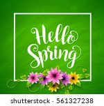 hello spring vector banner... | Shutterstock .eps vector #561327238