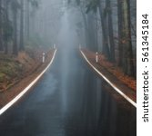 lonely foggy forest road | Shutterstock . vector #561345184