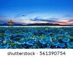 night view of west lake hangzhou | Shutterstock . vector #561390754