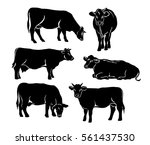 Cattle Silhouette Set In Black...